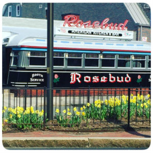 rosebud and daffodils