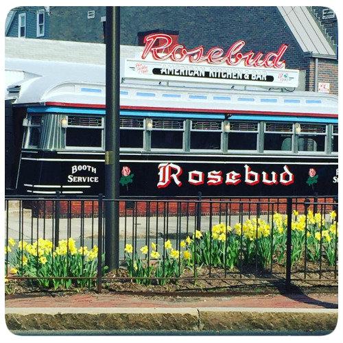 rosebud and daffodils