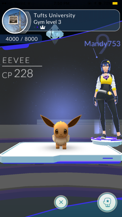eevee's ready to fight
